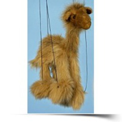 Save 16 Camel Marionette Small